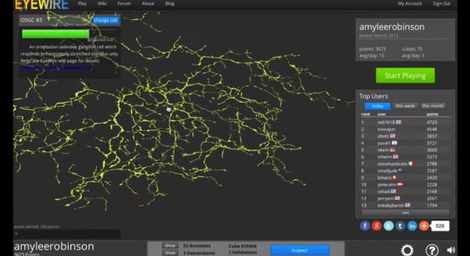 EyeWire Tutorial: How to Explore Different Cells