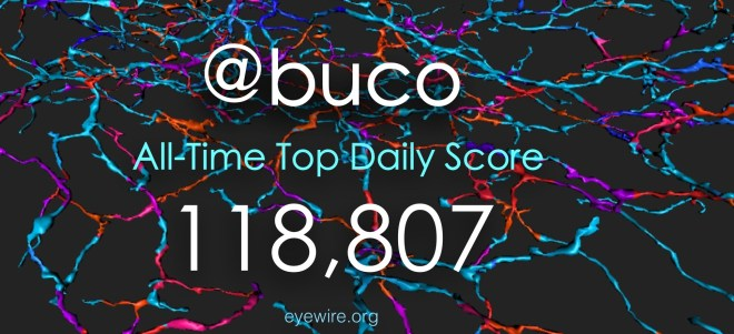 Buco New ALl Time Top Daily Score EyeWire