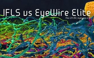 IFLS vs EyeWire Elite, EyeWire, competition, IFLS