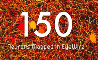 eyewire neurons 150