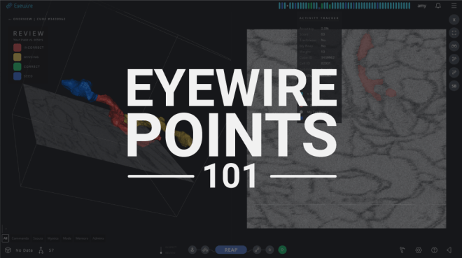 eyewire points 101, points, eyewire