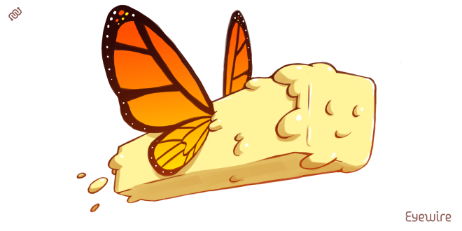 butterfly, funny, lol, butter fly, pun, punny, literal butterfly, funny butter fly, butter flying, flying butter