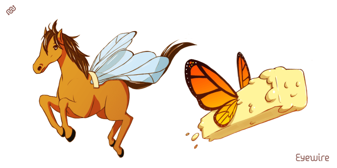 """""""Horsefly vs Butterfly"""", Horsefly, Butterfly, eyewire, citizen science, competitions, pun, butterfly pun, butterfly made of butter"""