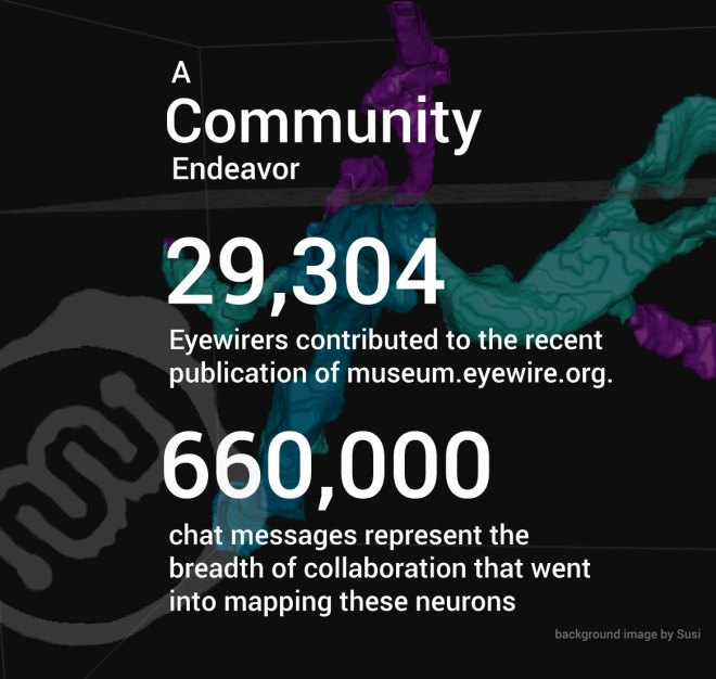 gamers, neurons, neuroscience, eyewire, brain, eyewire community, community, eyewire, ganglion,