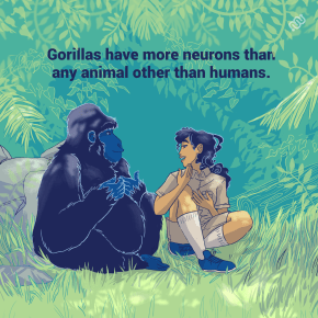 Lionize, eyewire, citizen science, Happy Hour, zoo brains, brain zoo, brain, neuroscience, cit sci, research, trivia, power hour, gorilla, sign language gorilla, zoo, zookeeper, neurons, gorilla brain, brain facts