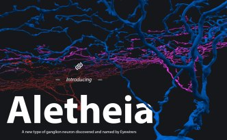 neuron naming, aletheia, 1no