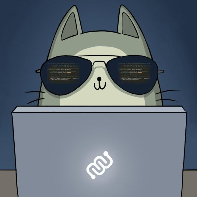 hacker, nurro, javascript, ninja, isolation station, eyewire, citizen science, MJ Kim