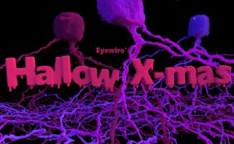Eyewire, citizen science, Hallow-Xmas, holiday, Halloween, Xmas