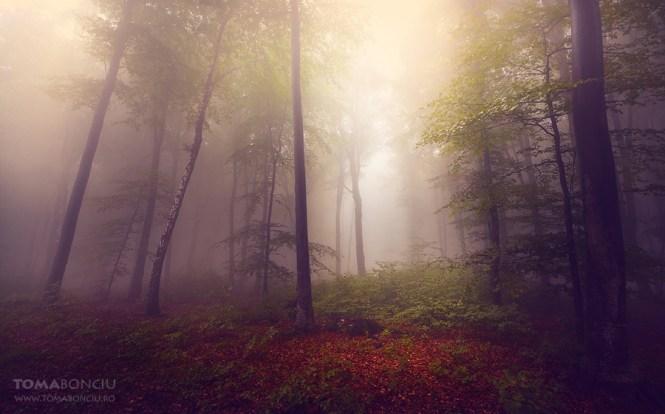 Fotografia de peisaj Fotografii de peisaj Toma Bonciu