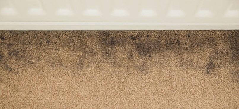removing old stains from carpet uk. Black Bedroom Furniture Sets. Home Design Ideas