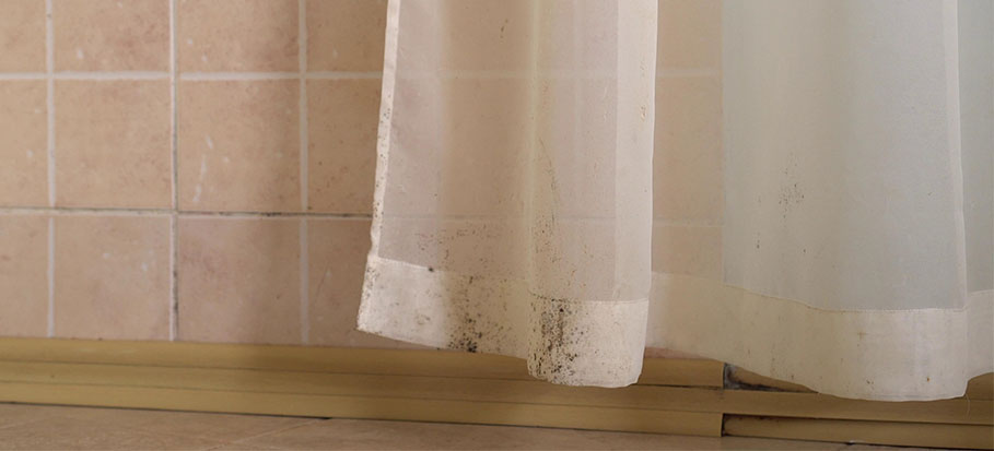 how to get rid of mould on curtains
