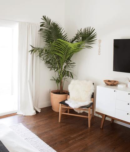 Plant Bedroom