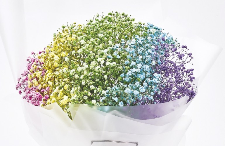 Rainbow Baby's Breath Bouquet | FarEastFlora.com