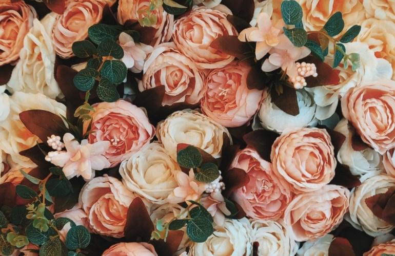 Garden Roses a plenty at FarEastFlora.com