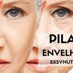 Exsynutriment – 1ª Etapa – Pilares do Envelhecimento