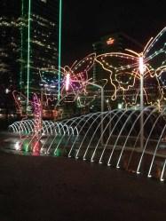 butterfly light display Dallas 12-4-2013-05