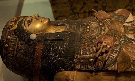 British Museum : une leçon d'expérience client