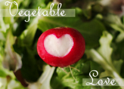 Vegetable Love 2009