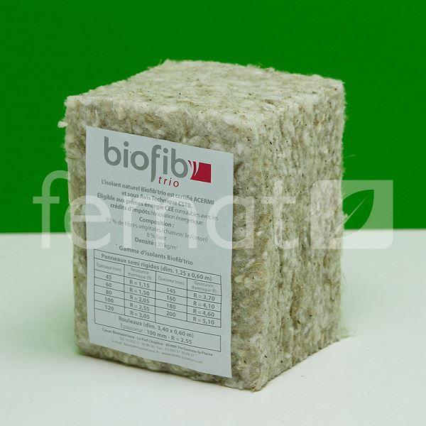 BioFib_Trio