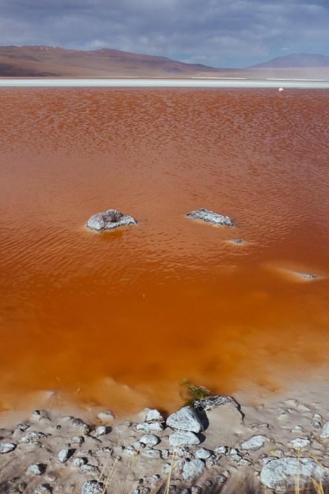 Die Laguna Colorada - von Algen rot gefärbt