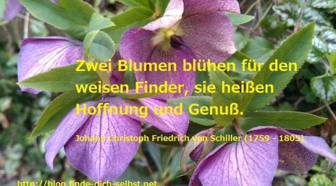 Zwei Blumen blühen für den weisen Finder, sie heißen Hoffnung und Genuß. Johann Christoph Friedrich von Schiller (1759 - 1805)