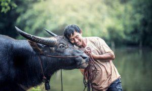 artgerechte Tierhaltung liebevoller Umgang