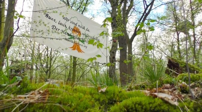 Hambacher Forst retten!