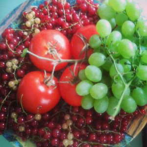 Kosz owoców Fiolka Endorfin