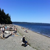 Owen's Beach on a summer day