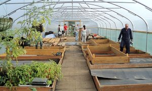 Get your Polytunnel prepared for Spring!