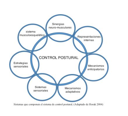 Sistemas que componen el sistema de control postural