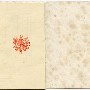 US.NNFIT.SC.TT505.P6.P639.1906.6
