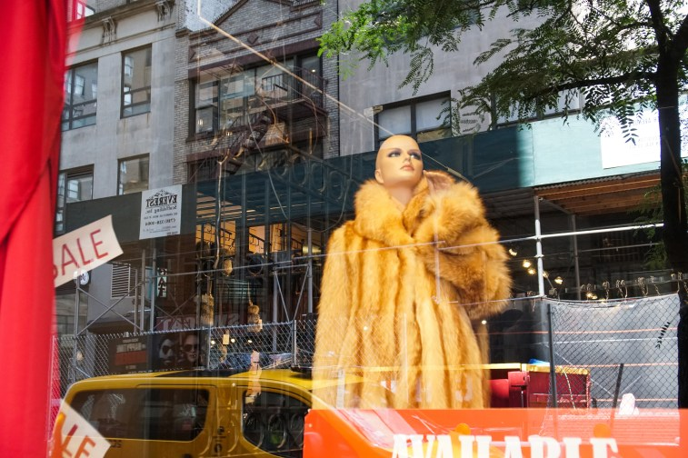 mannequin in a window