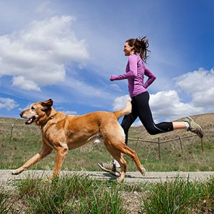dog-workout-opener-400x400