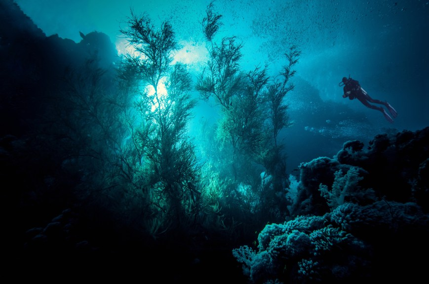 we experience narcosis when diving deeper