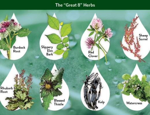 great 8 herbs Flor-Essence