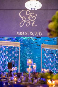 21Flora-Nova-Design-elegant-seattle-aquarium-wedding