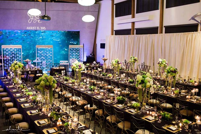 24Flora-Nova-Design-elegant-seattle-aquarium-wedding