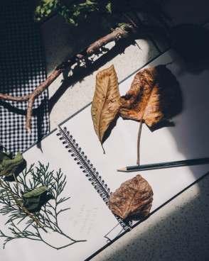 5-astuces-pour-faire-de-ton-automne-un-ete