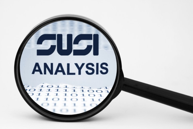 How SUSI Analyzes A Given Response