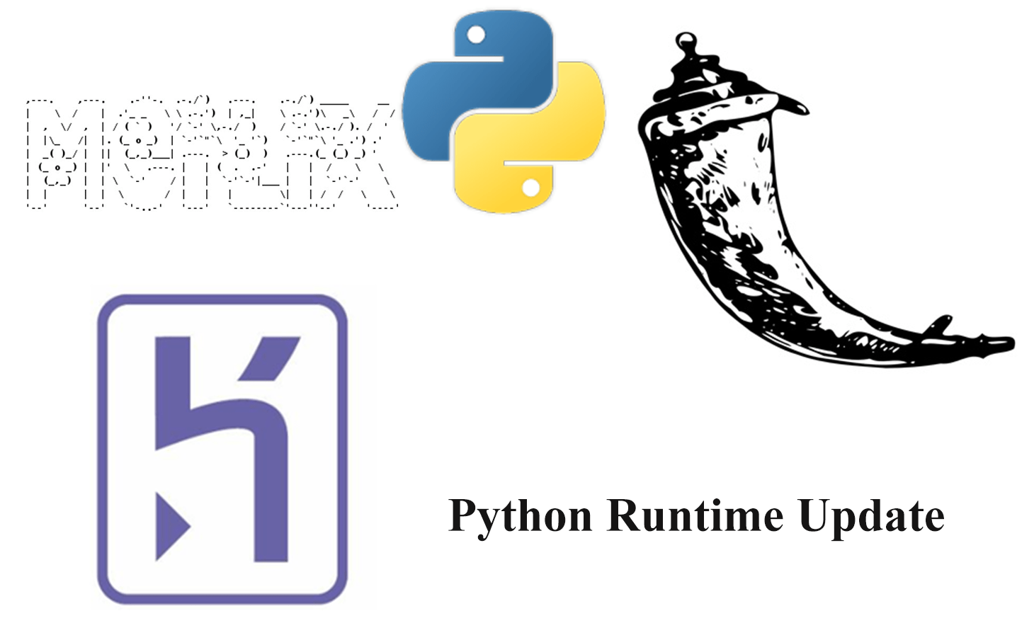 Update of Python Runtime in Meilix