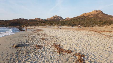 Spiaggi di Ostriconi