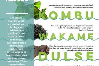 algues comestible