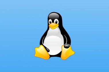 Linux 5.10 solo tendrá dos años de soporte si no hay implicación empresarial