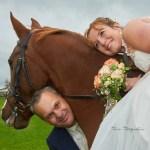 After Wedding Shooting Fotos mit Pferde in Unterthingau