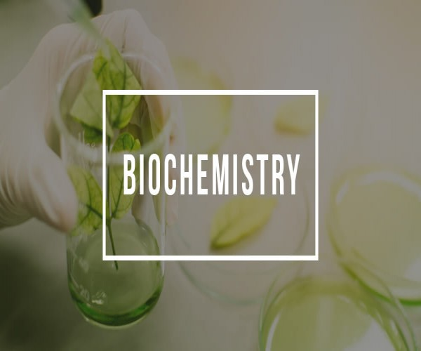 What Jobs in Qatar you can do with a Biochemistry Degree?