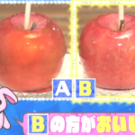 おいしい「りんご飴」の見分け方 [祭り攻略]