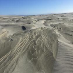 Farewell Spit sand dunes