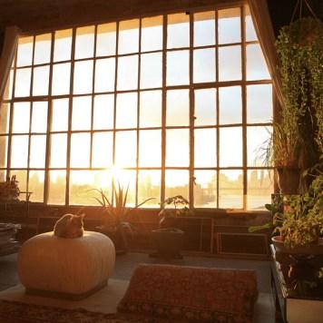 Warehouse Window Industrial Room