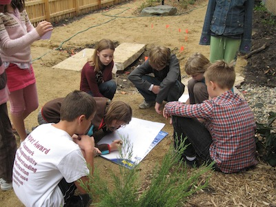 In 2009, middle school students planned and planted rain gardens on the Friends School of Minnesota grounds.